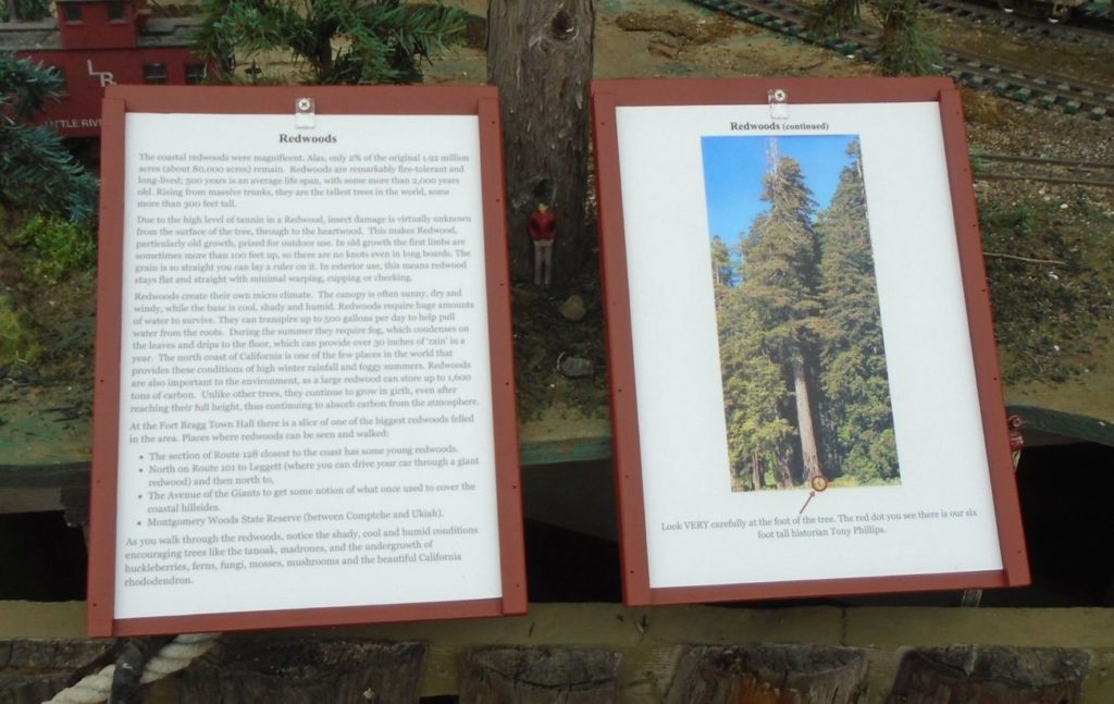 Redwoods Signs